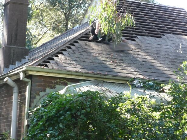 Roof Cleaning Sydney